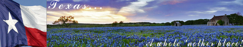 Texas Forum Home Page